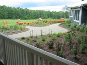 Second part of Landscaping Advice